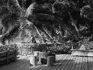 rocks, Palms, Ocean, Hotel hall, Seychelles, terrace