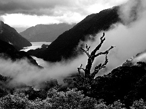Mountains, Fog, clouds, River