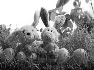 rabbits, Meadow, Easter, eggs