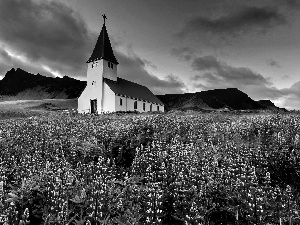 Mountains, Church, Flowers, Meadow