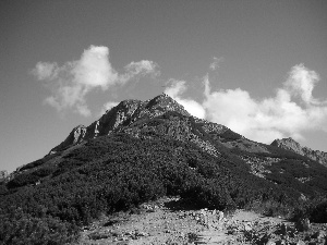 mount, Giewont