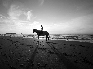sea, Horse, girl, Beaches