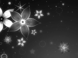 graphics, Flowers, Stars