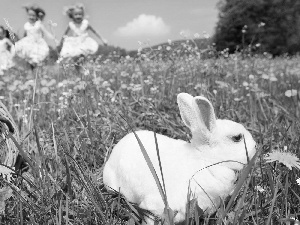 Kids, Meadow, Rabbit, eggs, Easter