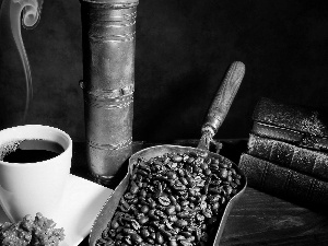 coffee, scoop, psalterium, Cup