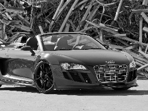 Red, Audi R8