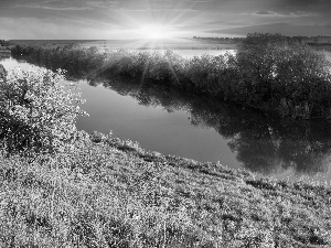 viewes, medows, sun, trees, River, rays, autumn