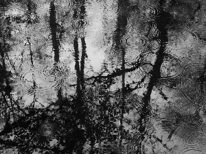 reflection, Rain, water