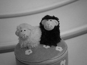 toy, sheep