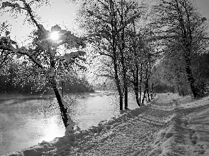 snow, winter, trees, viewes, River
