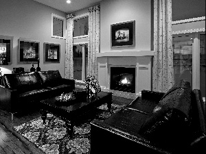 Sofas, burner chimney, Black, leathers, saloon