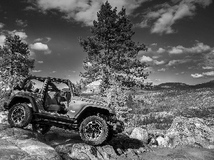 trees, jeep, Stones, clouds, viewes, Wrangler