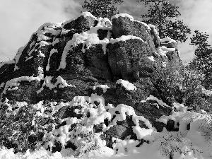trees, viewes, rocks, snow, winter