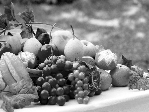 Fruits, mandarin, truck concrete mixer, Grapes
