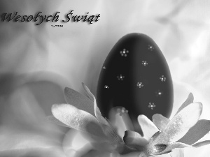 Easter, wallpaper, Widescreen, egg