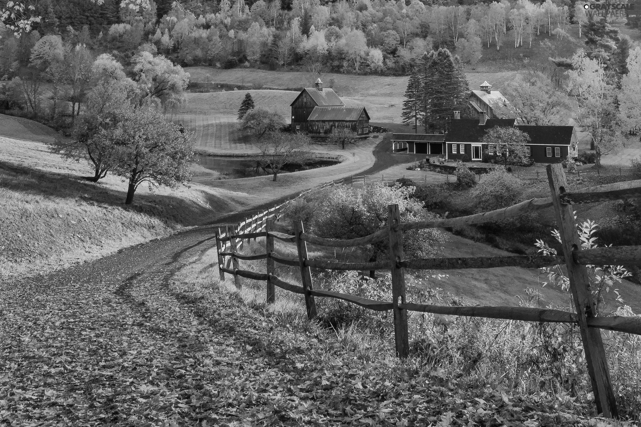 fallen, trees, State of Vermont, fence, The United States, Pomfret, Way, Leaf, Pond - car, autumn, viewes, New England, Houses