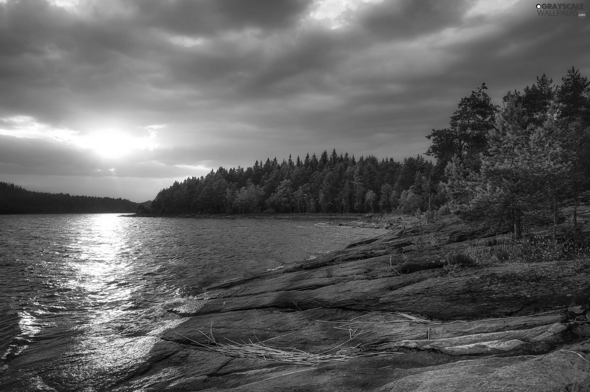 viewes, Russia, rocks, trees, Lake Ladoga