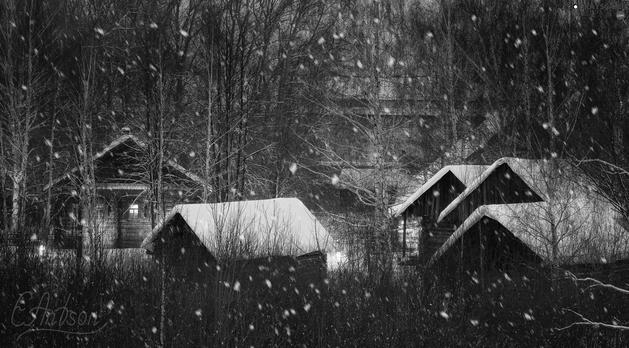 Houses, Night, incident, winter, forest, lighting, snow
